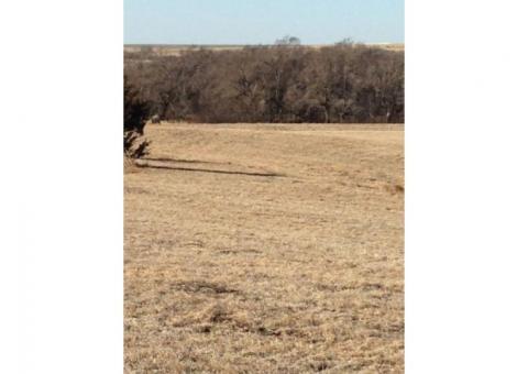 Phillips County, Ks. hunting, grass & farmland