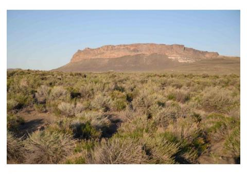 32 Acres with incredible an incredible 360 degree view of mountains (Owner Financing)